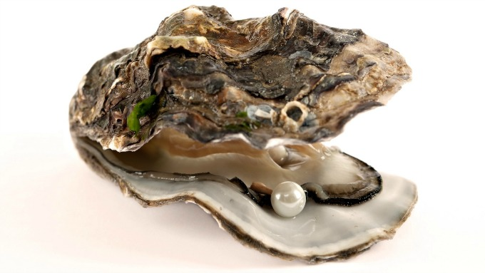 oysterpearl-957039resize